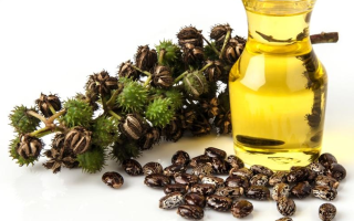 Косметические масла для лица вместо крема: рейтинг, 10 самых лучших по отзывам, применение, как пользоваться