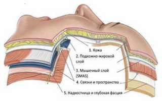 Что такое лифтинг ресниц и какие особенности процедуры?